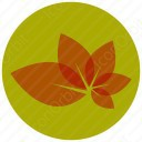 Abstract Leaf icon